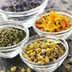 Summer herbal remedies