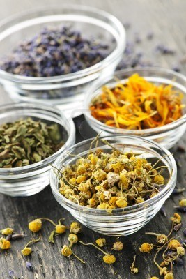 7983257-assortment-of-dry-medicinal-herbs-in-glass-bowls